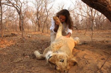"""27 déc 19 – C8 """"Ils vivent avec des animaux sauvages : leurs incroyables amitiés """" à 21H15."""
